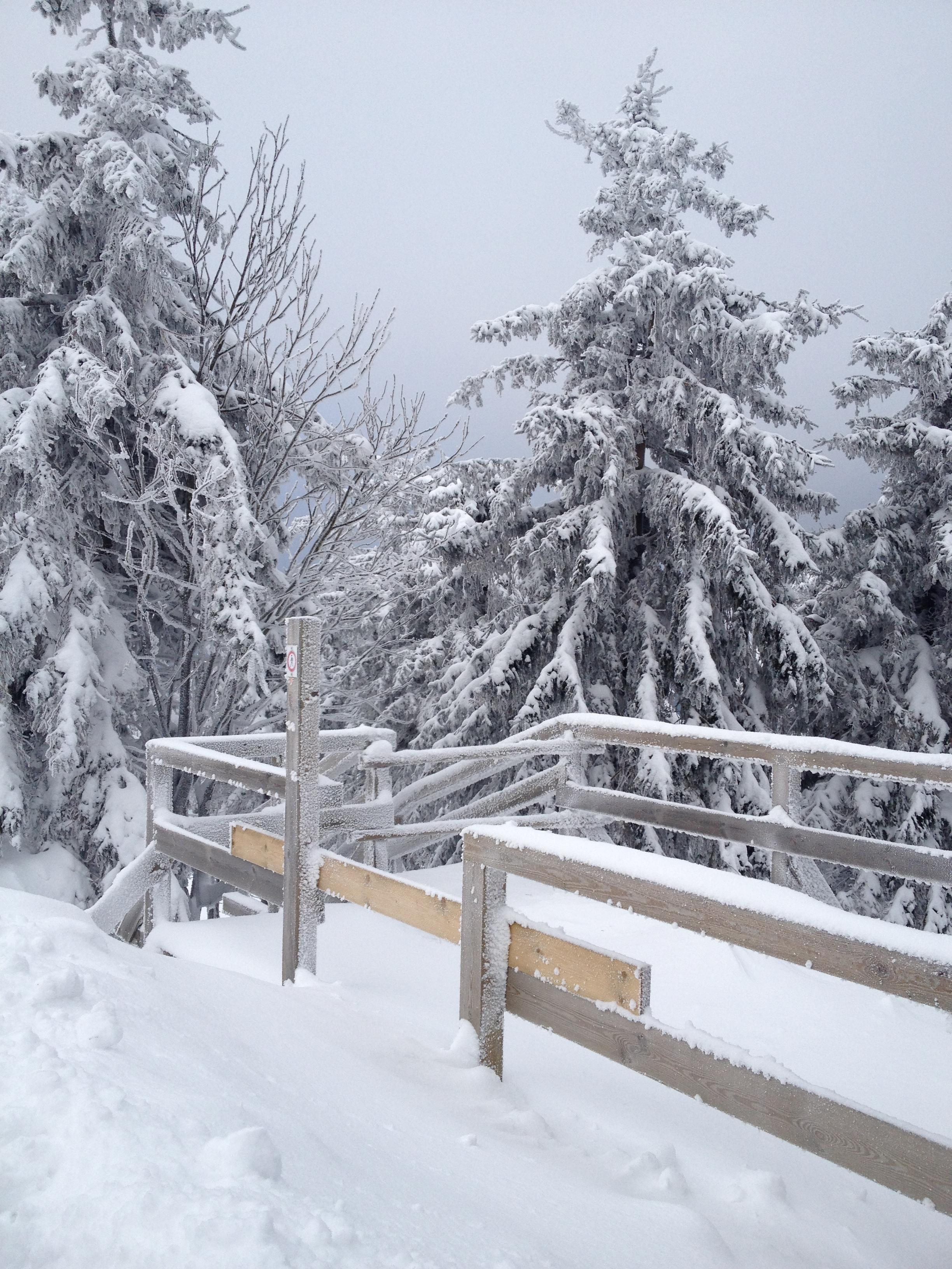 Arlberg 2013