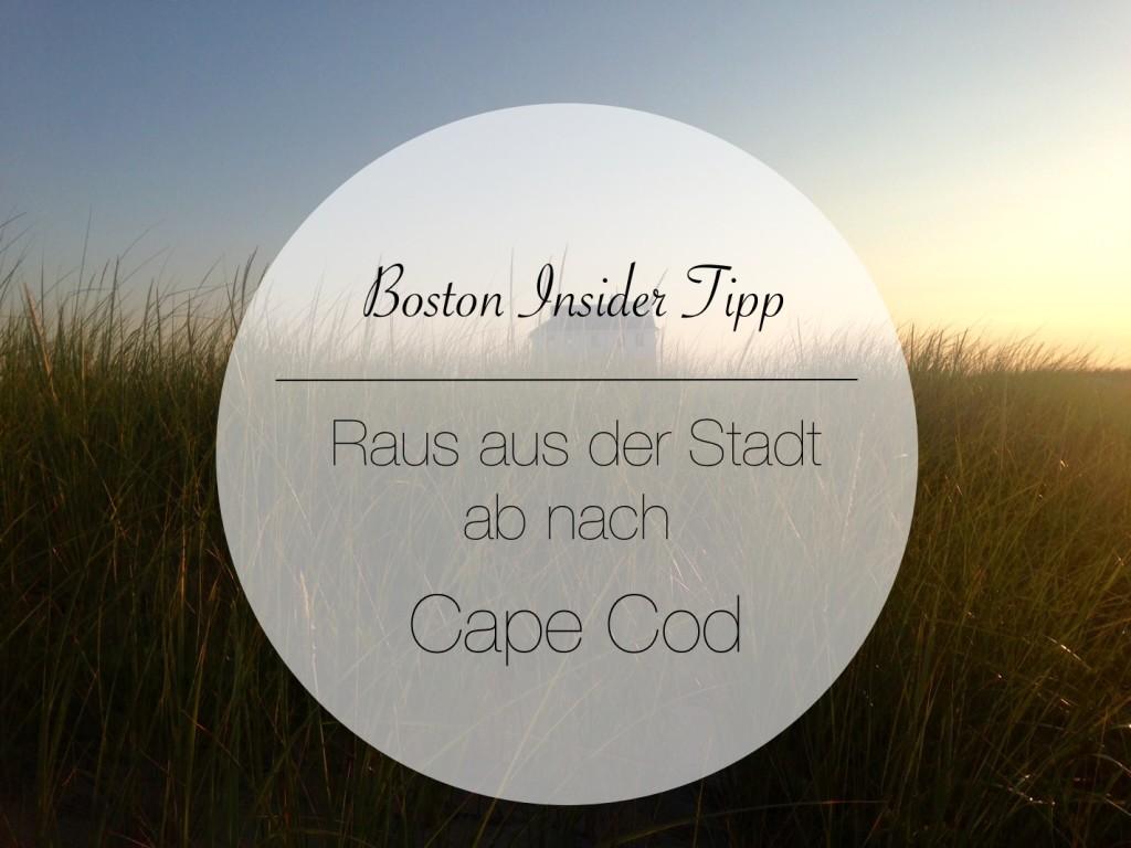 Boston Insider Tipp: Fahrt nach Cape Cod!