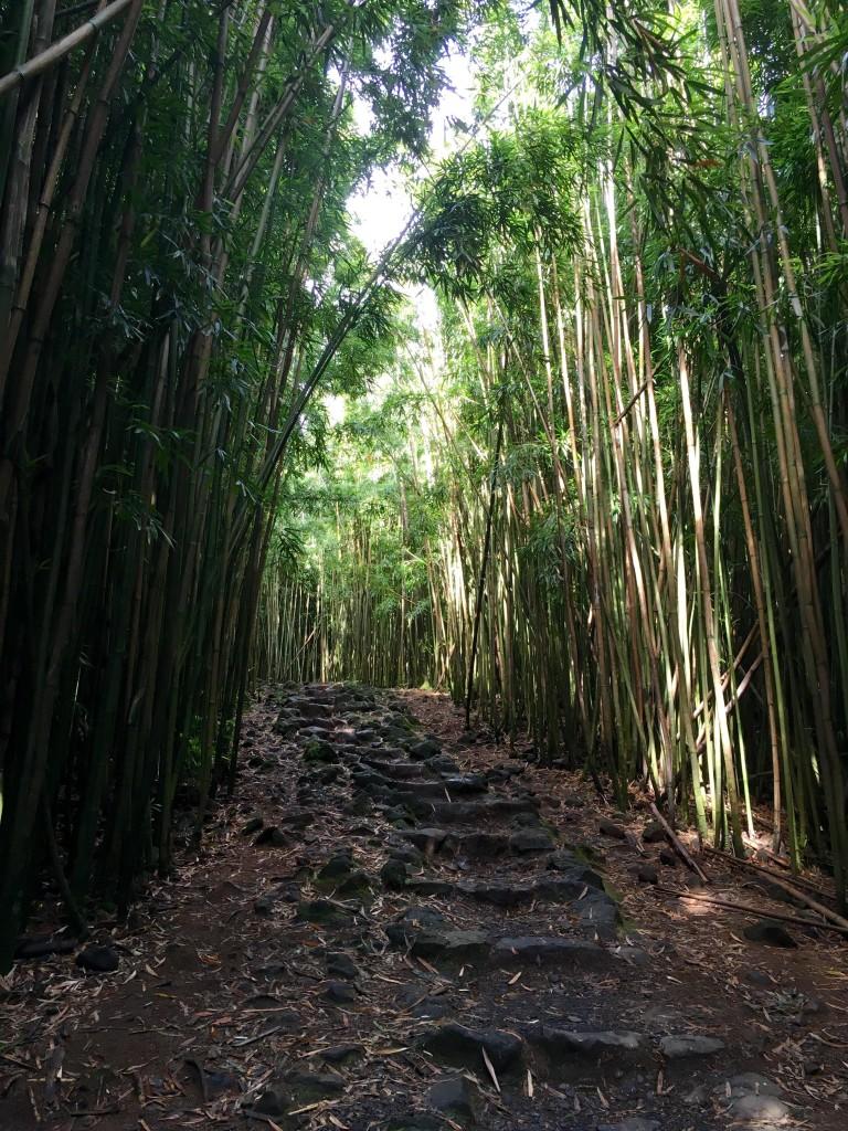 Maui Insider Tipps Wanderung